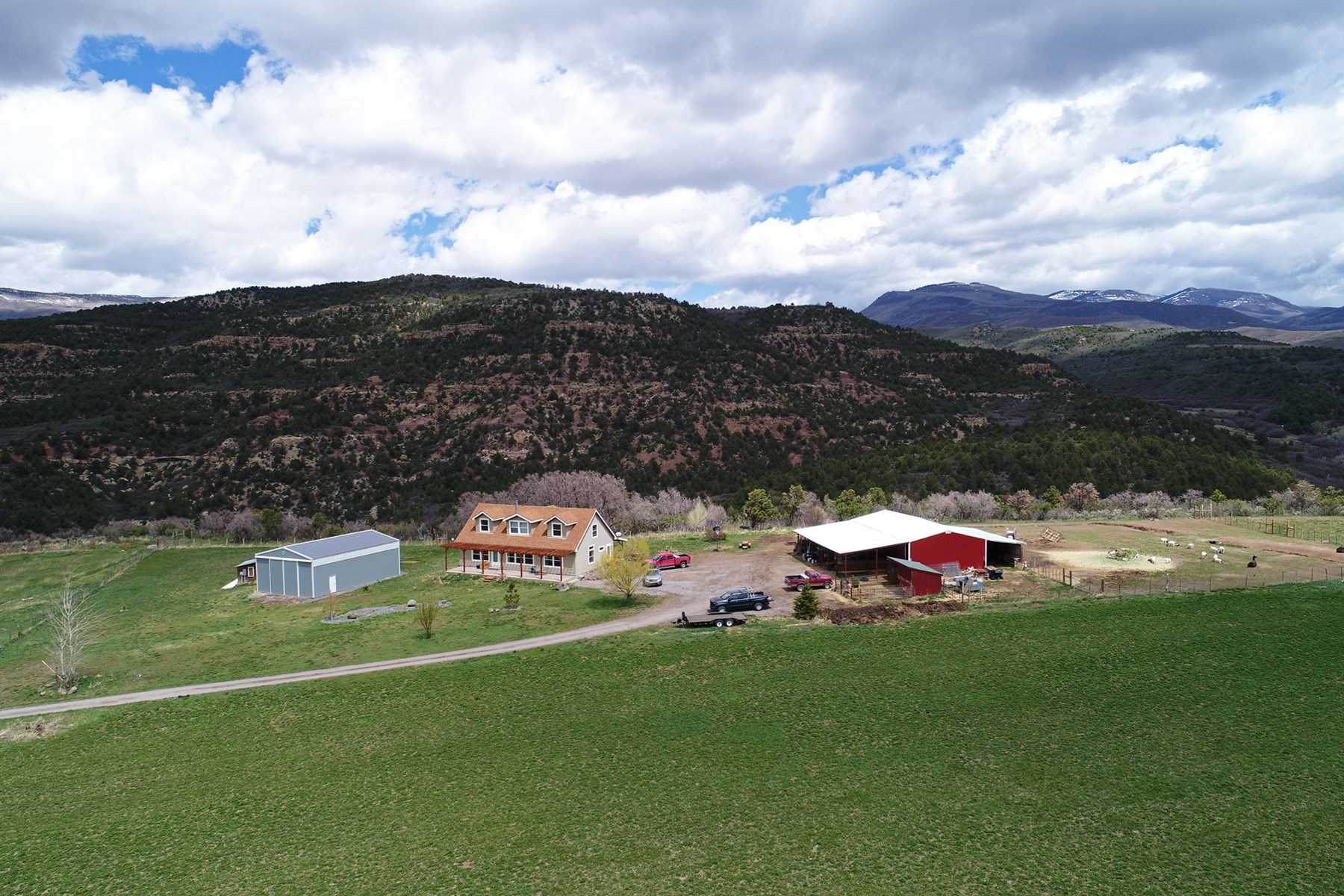 Home, Shop, Barn, Irrigated Acreage with Deeded BLM Access