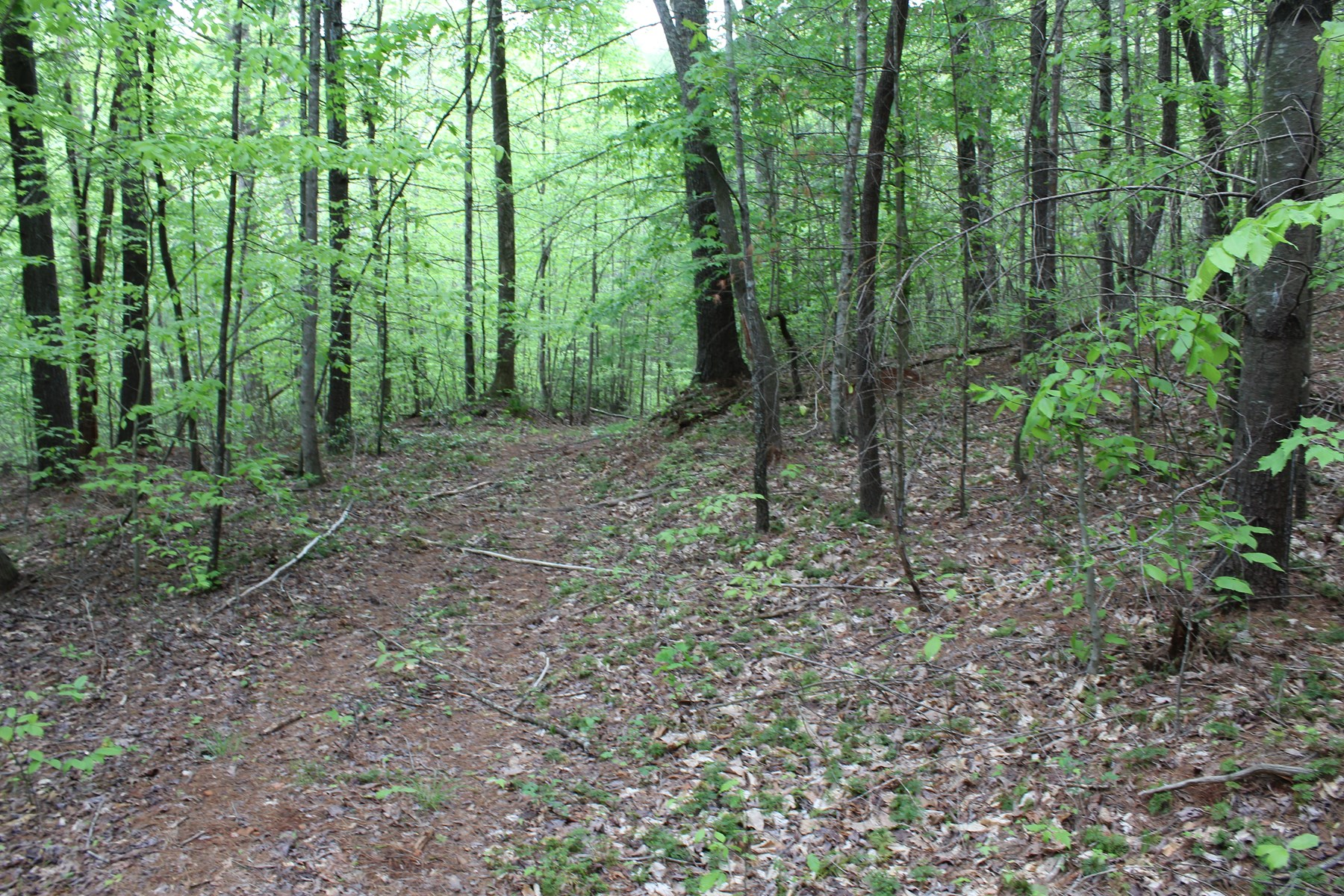 80.57 ACRES OF LAND LOCATED IN PATRICK COUNTY, VIRGINIA