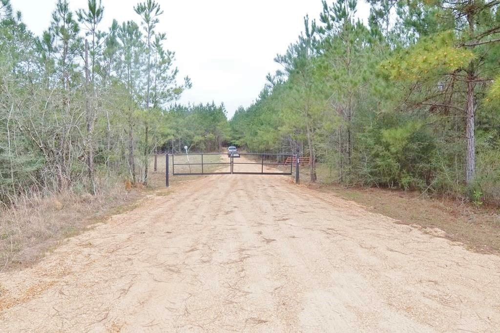 Hunting, Investment Land for Sale Jefferson Davis County MS