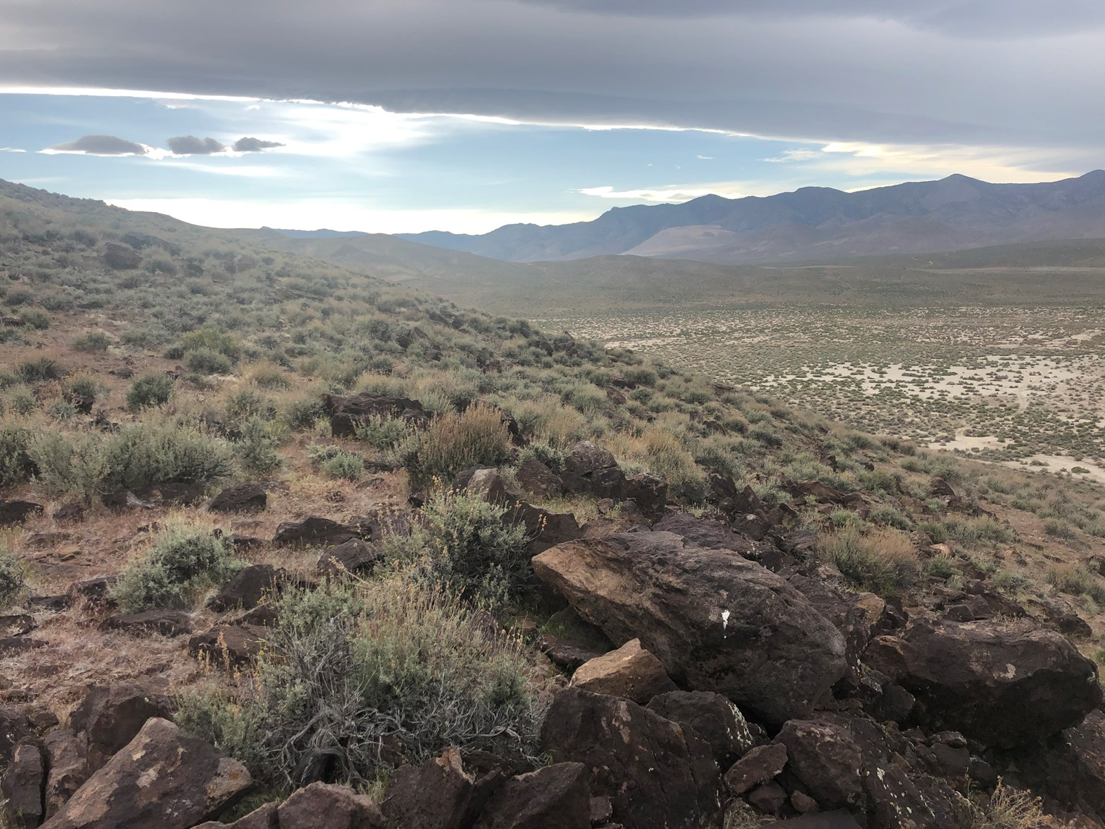 Buildable Nevada Land next to BLM For Sale Lyon County NV