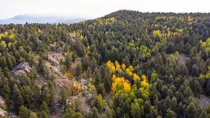 KBO RANCH: COLORADO MOUNTAIN RANCH NEAR COLORADO SPRINGS