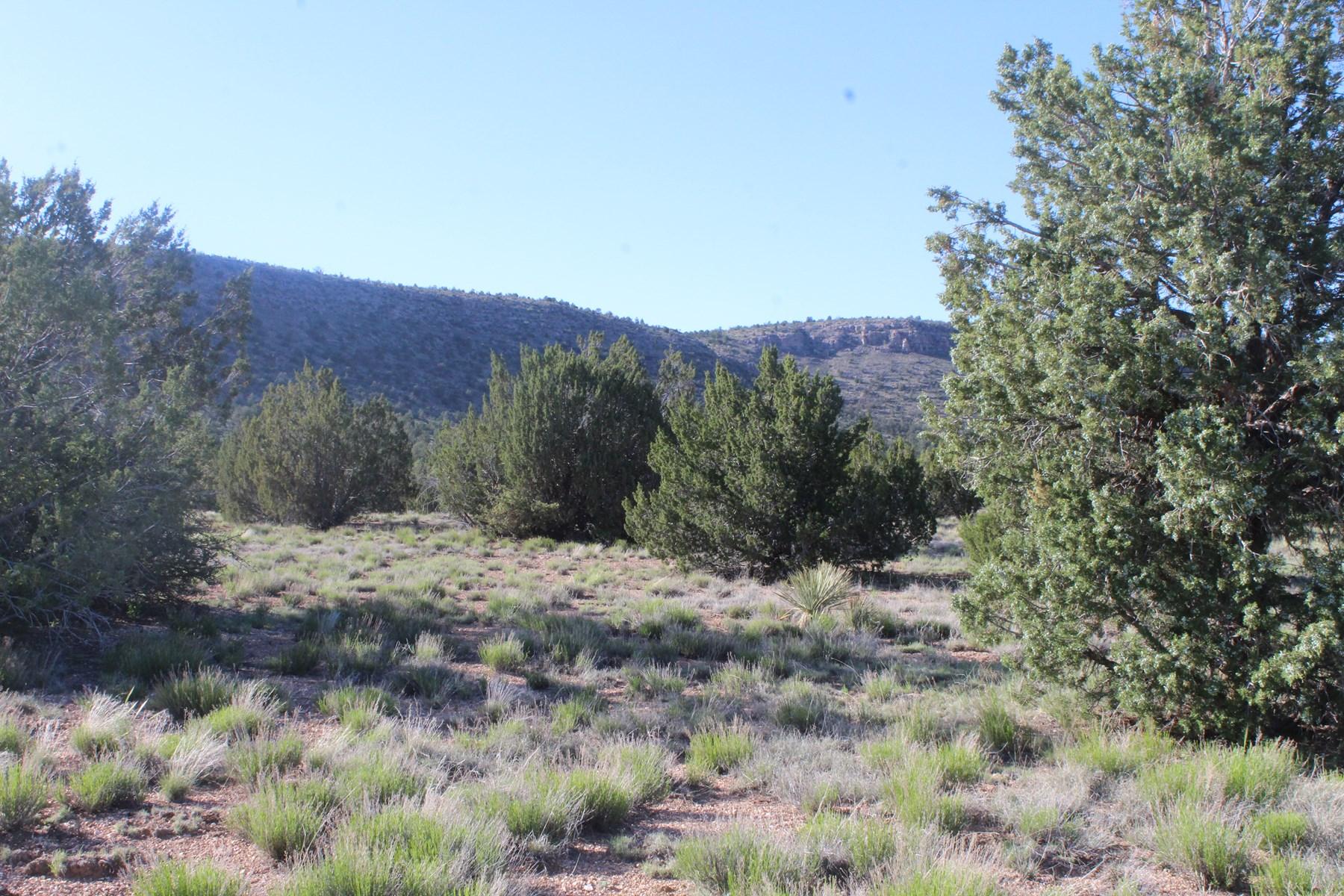 Mountain Land border Public Land No HOA