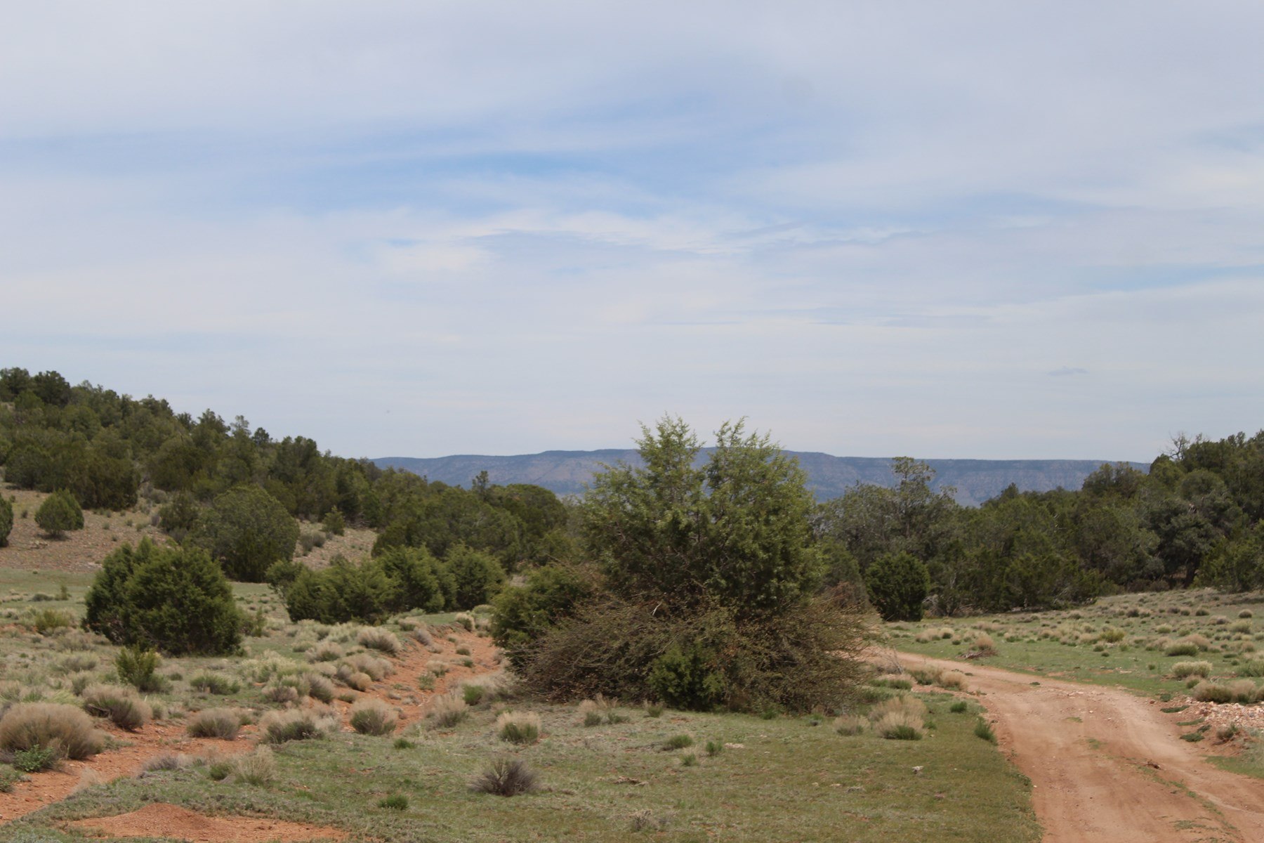 Varied Terrain, Seligman Land 35+ acres, NO HOA