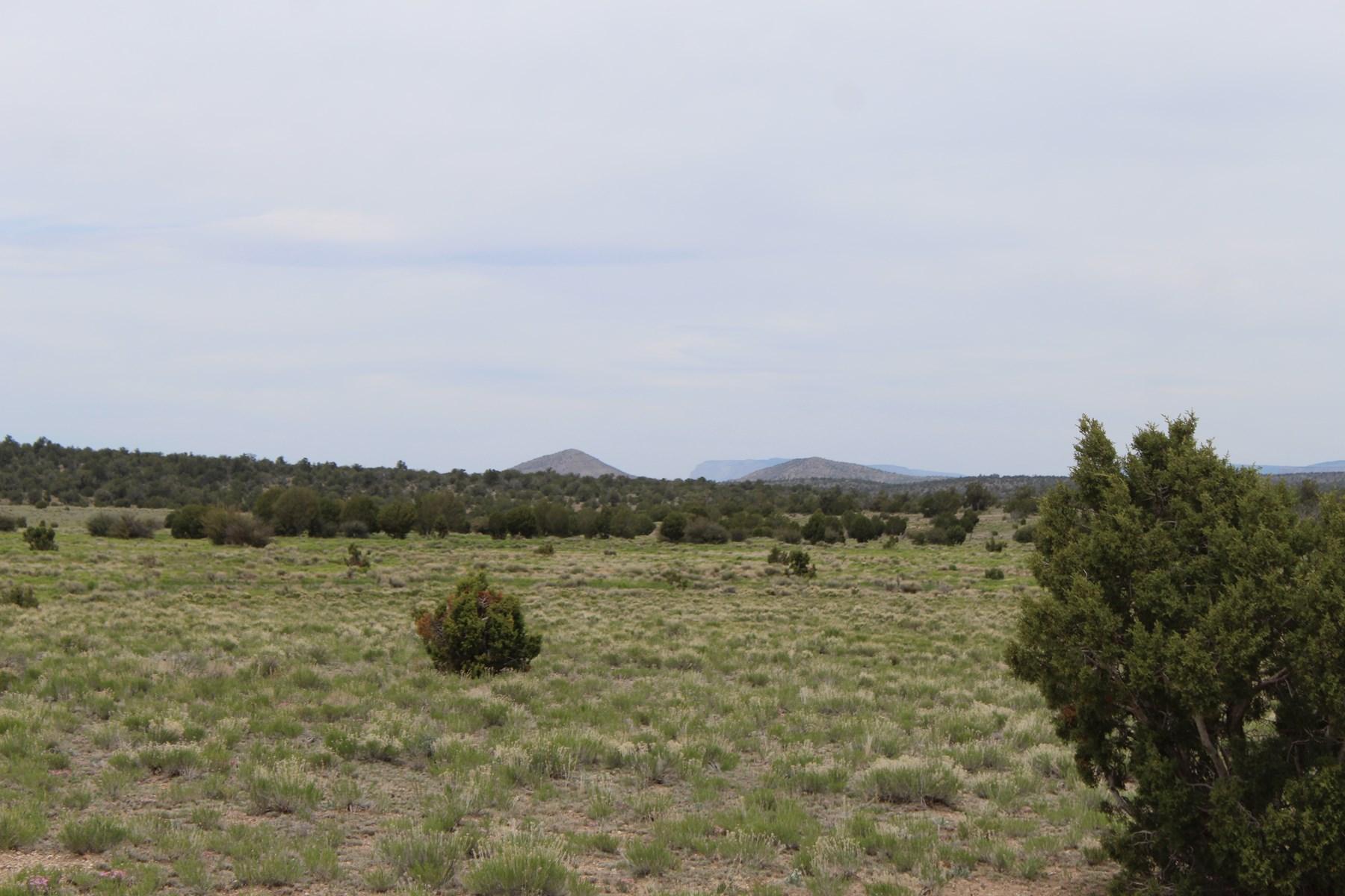 Level Land Great for Horses, No HOA for sale Seligman AZ