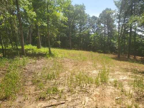 CLEARED LOT RIDGE @ THE WOODS READY TO BUILD PERFECT HOME