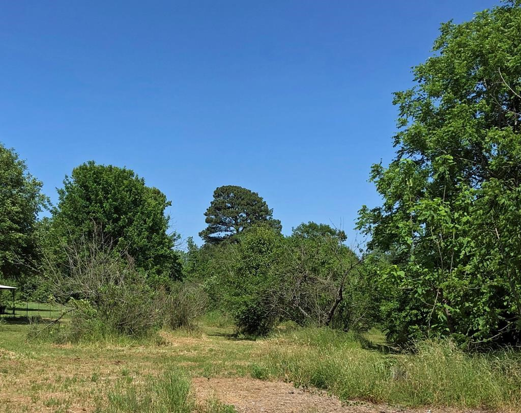 LOT FOR SALE IN WESTWOOD ISD  PALESTINE TEXAS