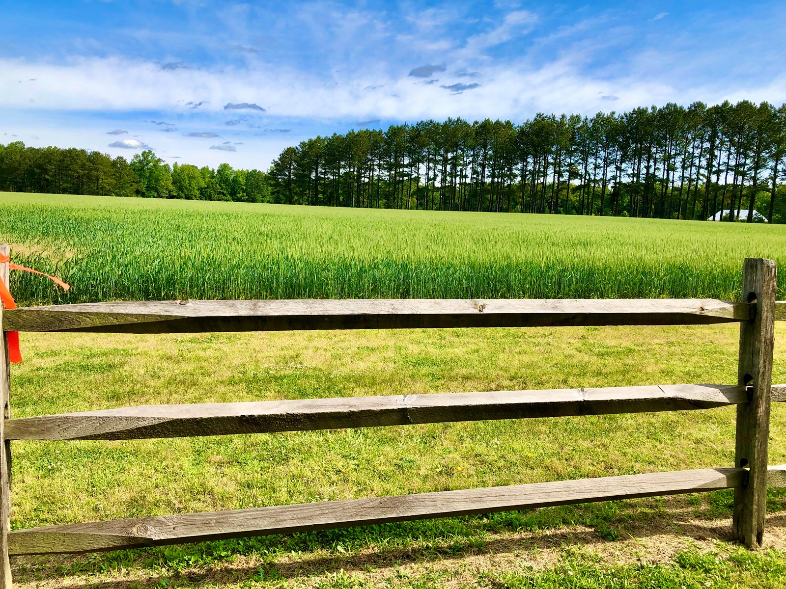 Small farm for sale in Beaufort County, NC