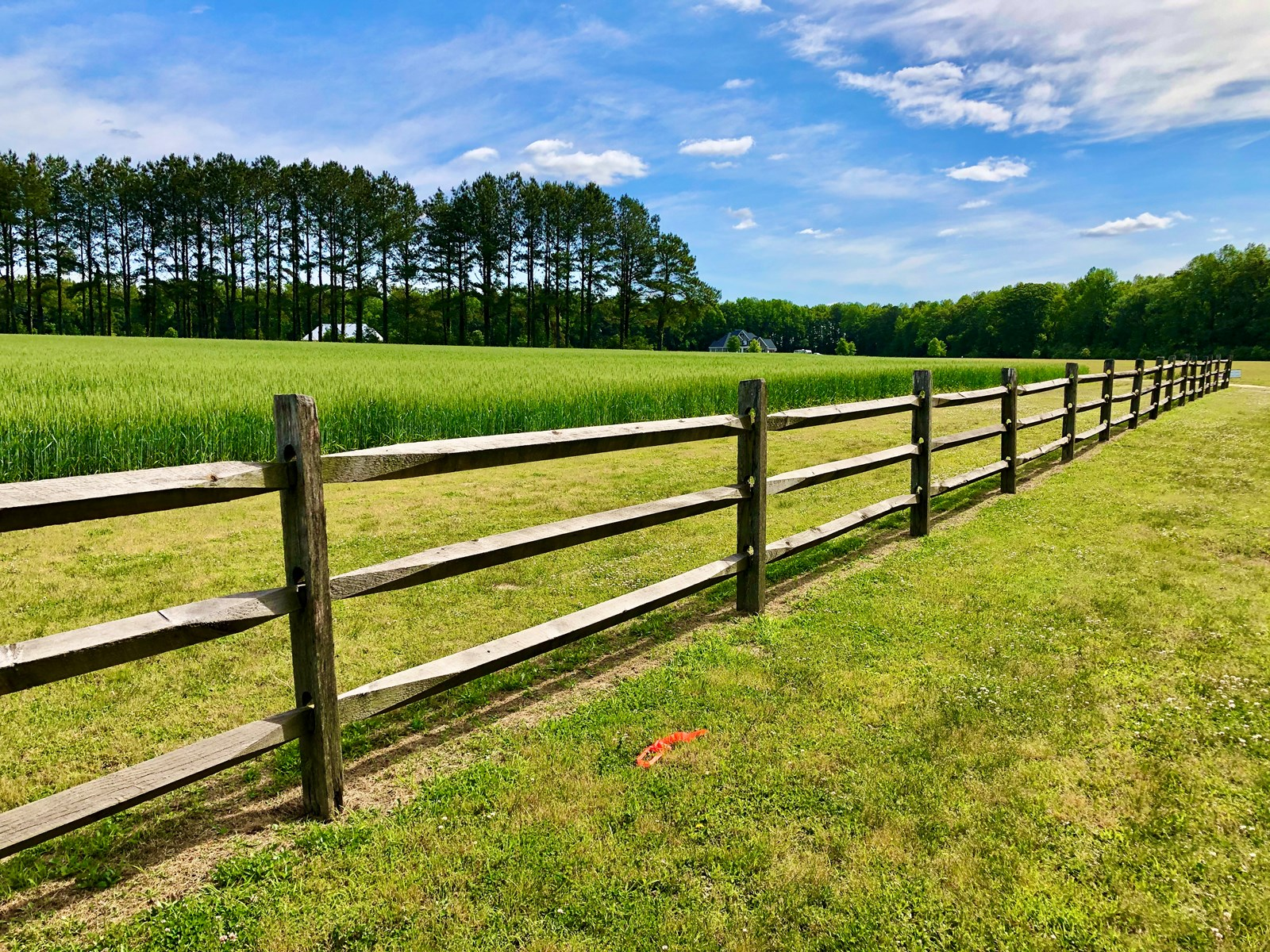 Farm, Timberland and Residential Lot in Beaufort County, NC