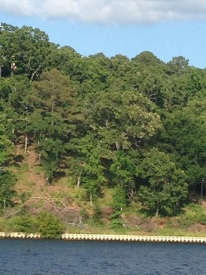 WATERFRONT BLUFF LOT FOR SALE IN EAGLES BLUFF LAKE PALESTINE