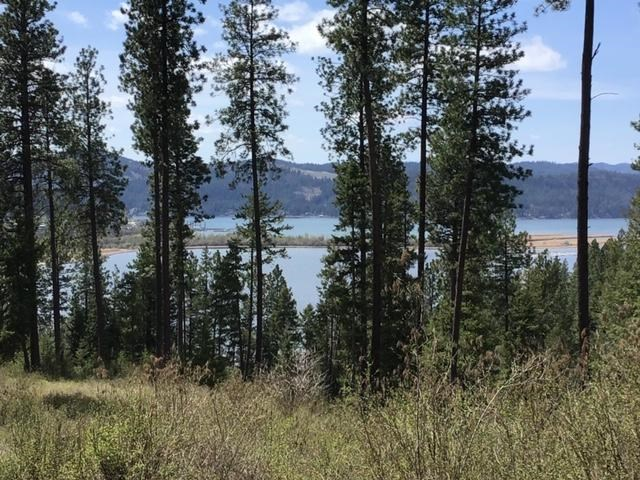 Beautiful Acreage Near Harrison Idaho