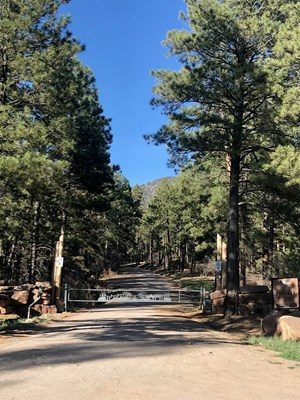 NORTHERN NM ALPINE HUNTING RANCH RECREATIONAL PROPERTY CHAMA