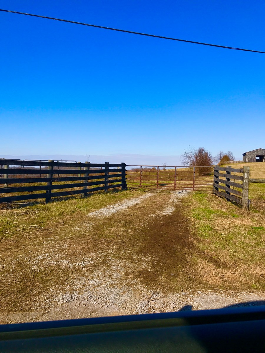 Ky Cattle or Hunting Farm