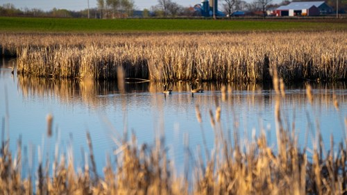 Waterfowl & Whitetail Hunting Land For Sale WI