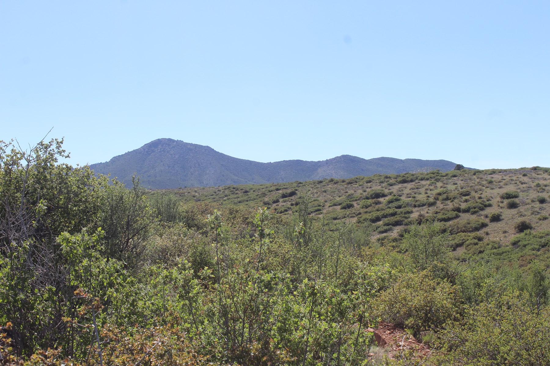 5+ acres Dewey-Humbolt, borders state, no hoa