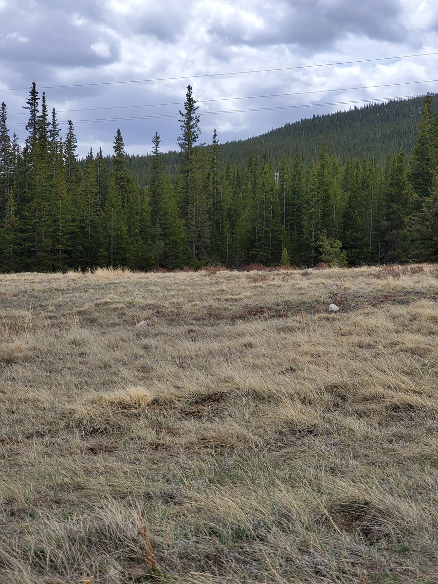 Mountain Property For Sale close to Breckenridge, Colorado