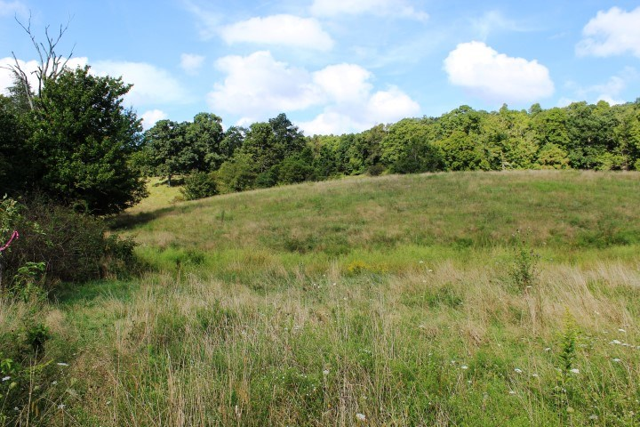 37.98 ACRES OF LAND FOR SELL IN PATRICK COUNTY, VIRGINIA