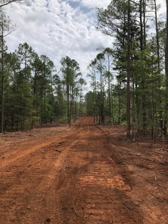 37.5 ACRE FORESTED WITH POND CREEK ELECTRICITY & COMM WATER