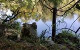 Great 2.4 Acre Suwannee River property