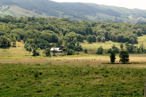 90 Acres for sell in the Blue Grass Valley of Highland Co.VA