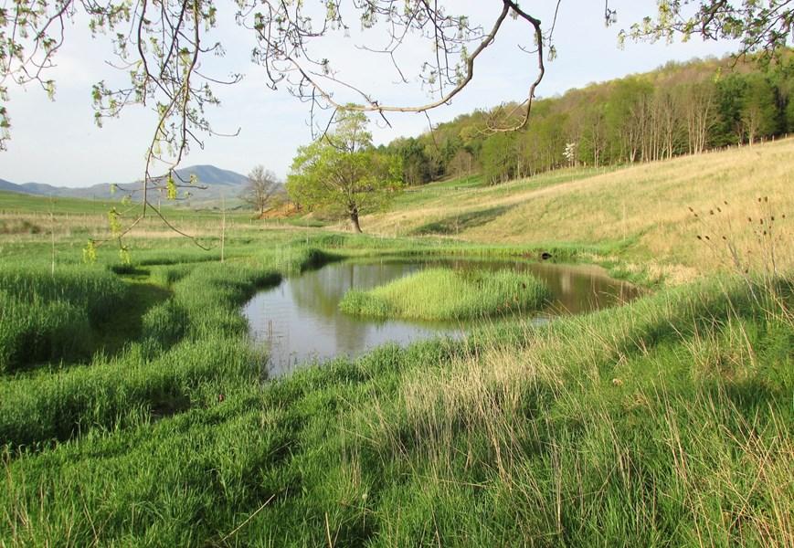 South Branch of Potomac River