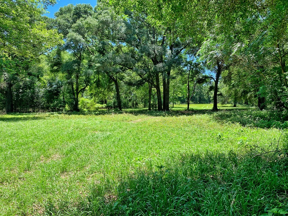 LAND FOR SALE  - O'BRIEN, SUWANNEE COUNTY, FLORIDA