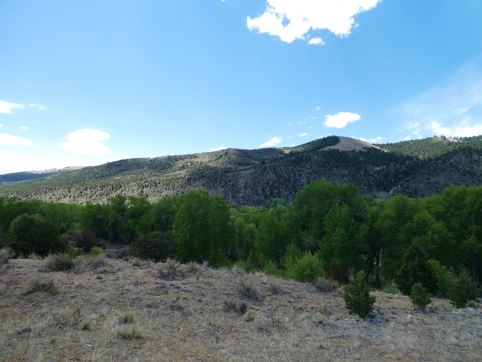 Prime Location in Maysville, CO