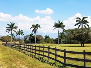 FARM FOR SALE IN COSTA RICA UNITED COUNTRY COSTA RICA