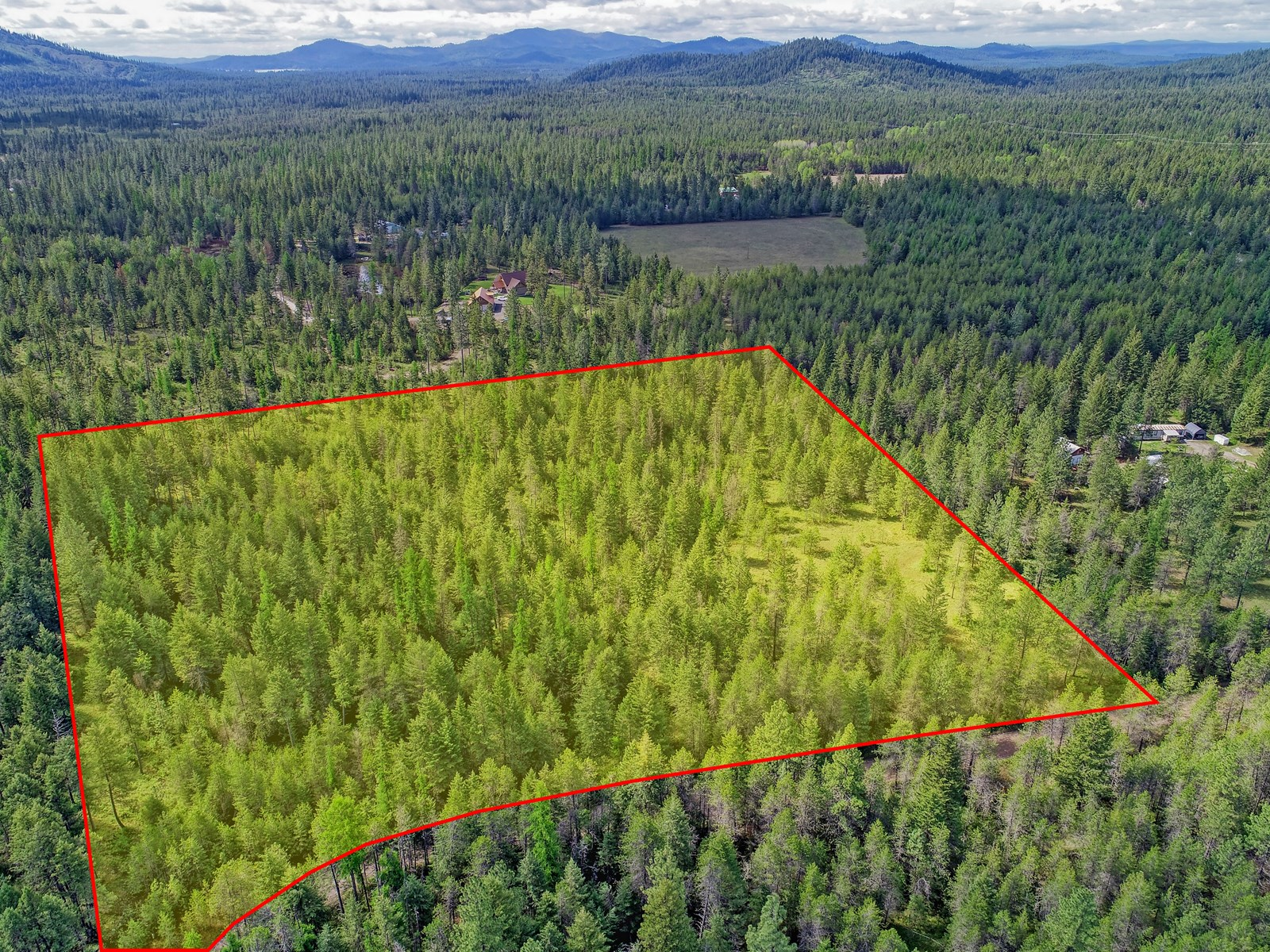 Secluded Wooded Acres for Sale in Loon Lake!