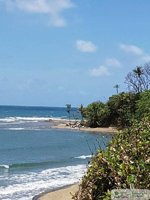 32 HECTARES BEACH FRONT LAND IN CHAGRES COLON PANAMA