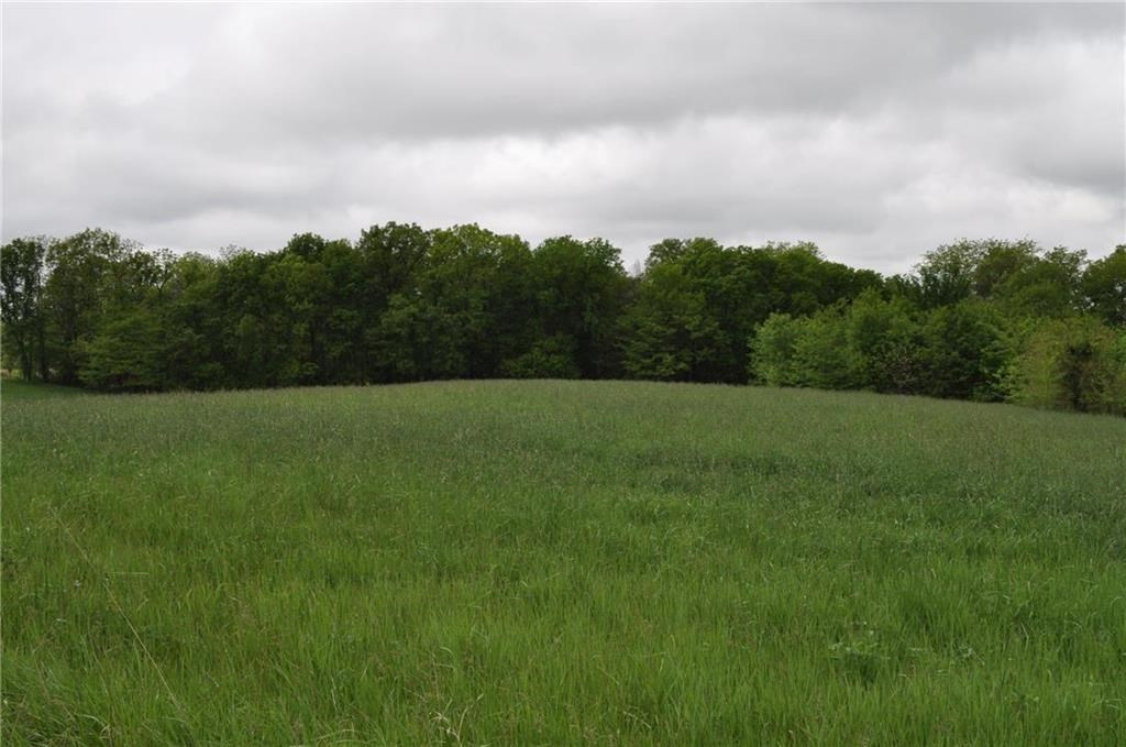 84+/- Acre Quality Farm. Includes 2 Bed Farm House w/ Pond