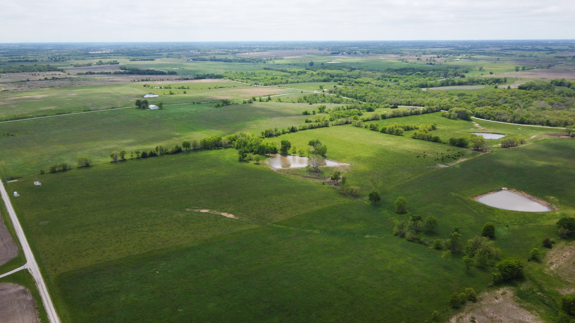 Missouri Cattle Ranch and Country Homes For Sale
