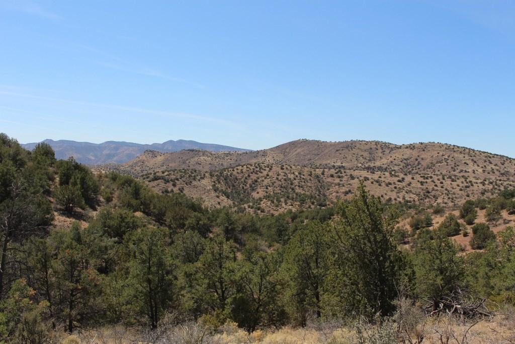 117 +/- Head Tule Springs Ranch, Greenlee Co, AZ  $995,000