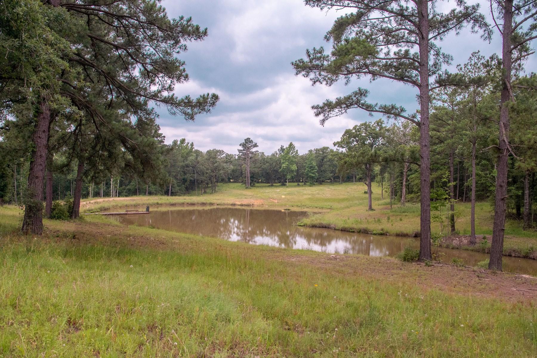 Land For Sale - 71 Acres - Near Oakwood - Leon County Texas