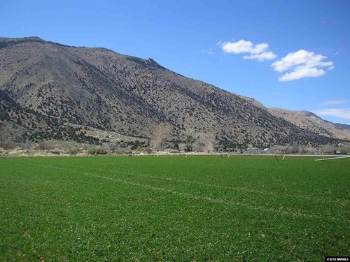 Smith Valley Nevada Hay Ranch & Water Rights For Sale