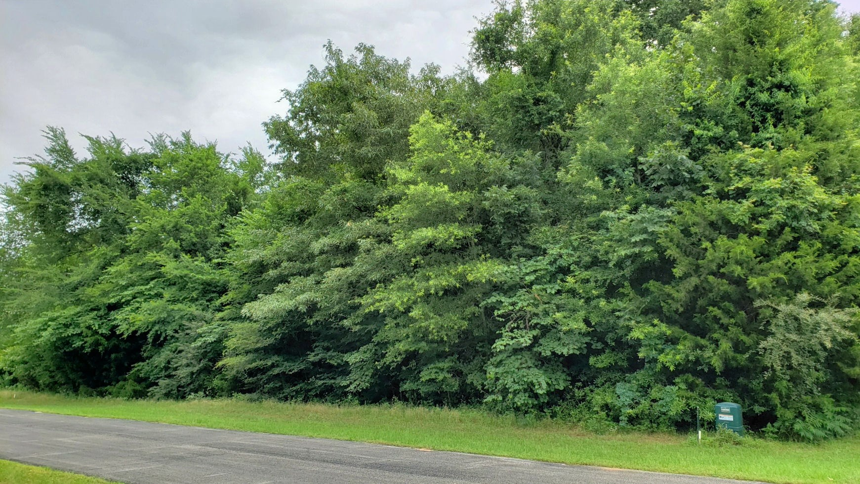 LEVEL LOT IN AIRPORT COMMUNITY ON LAKE PALESTINE IN EAST TX