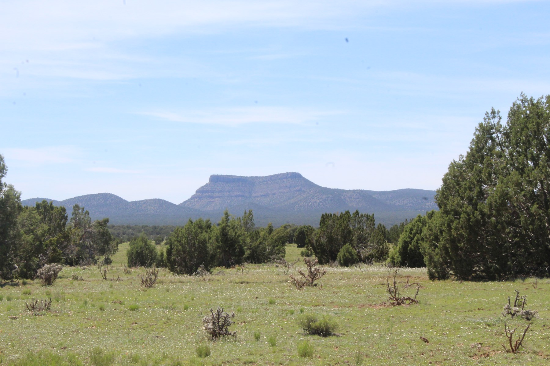 Mountain Land for Sale with Owner Financing Available