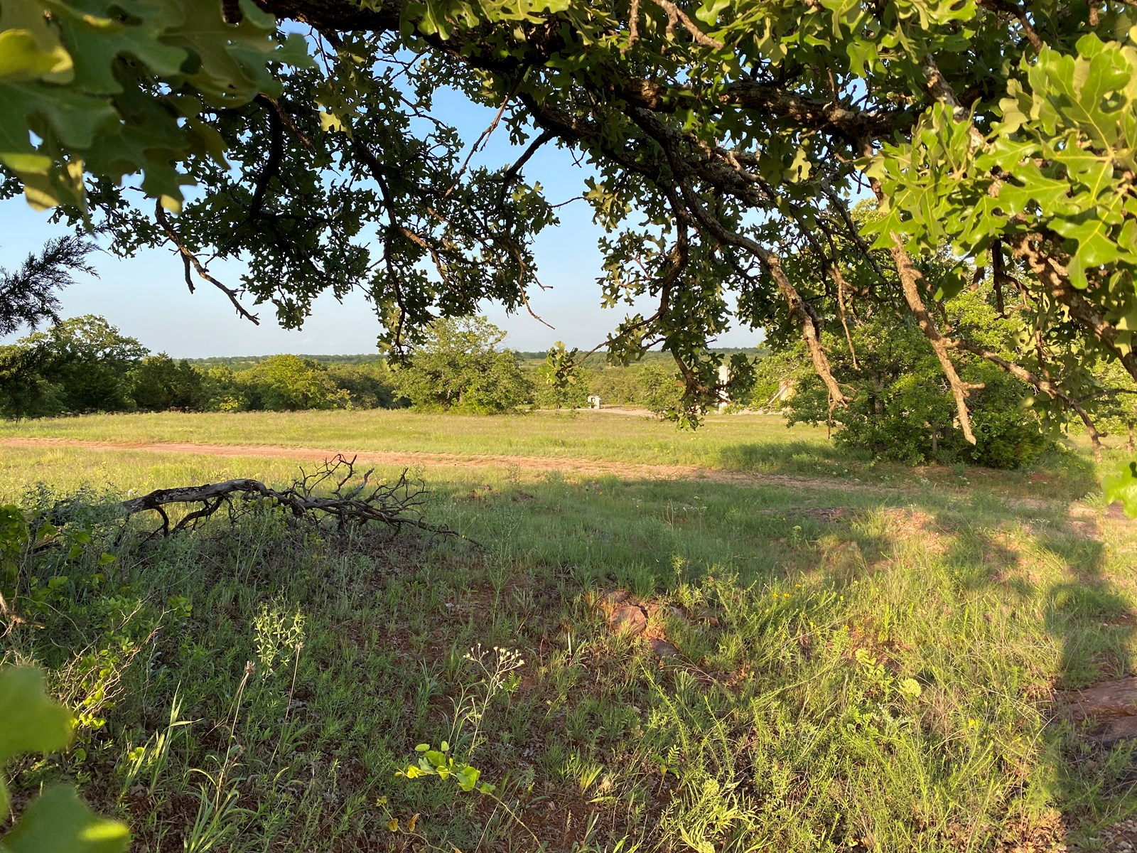 HUNTING LAND FOR SALE IN CARTER COUNTY-RATLIFF CITY, OK