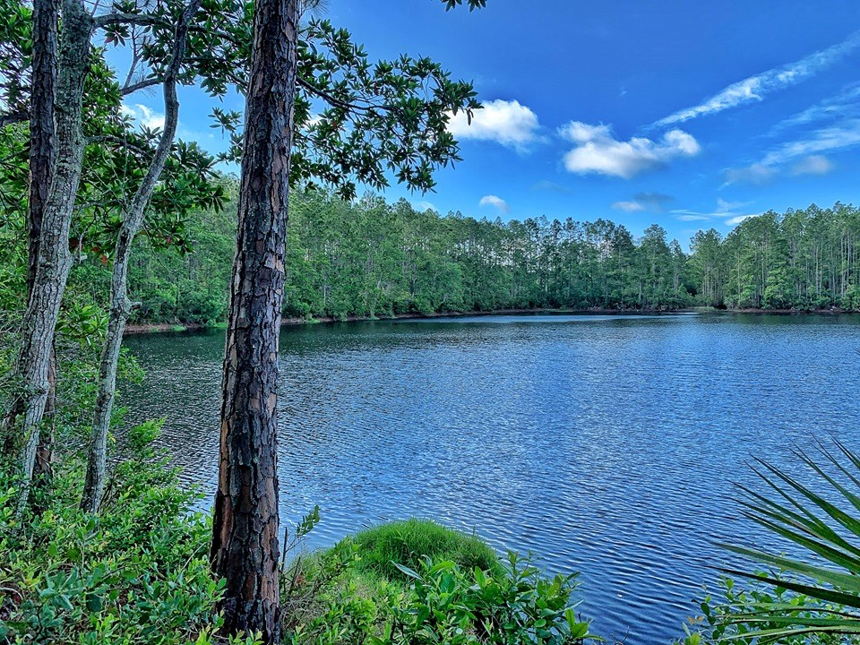 RECREATIONAL TRACT - 521+ ACRES - ST. AUGUSTINE, FLORIDA
