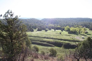 NORTHERN NM LAND FOR SALE