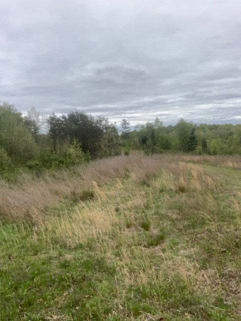 Jackson County Ohio 80 Acres Recreational Land For Sale