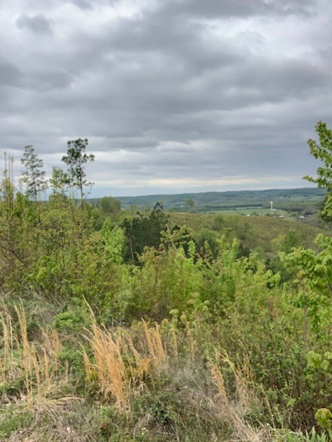 180 Acres Recreational Land For Sale on Swift Creek