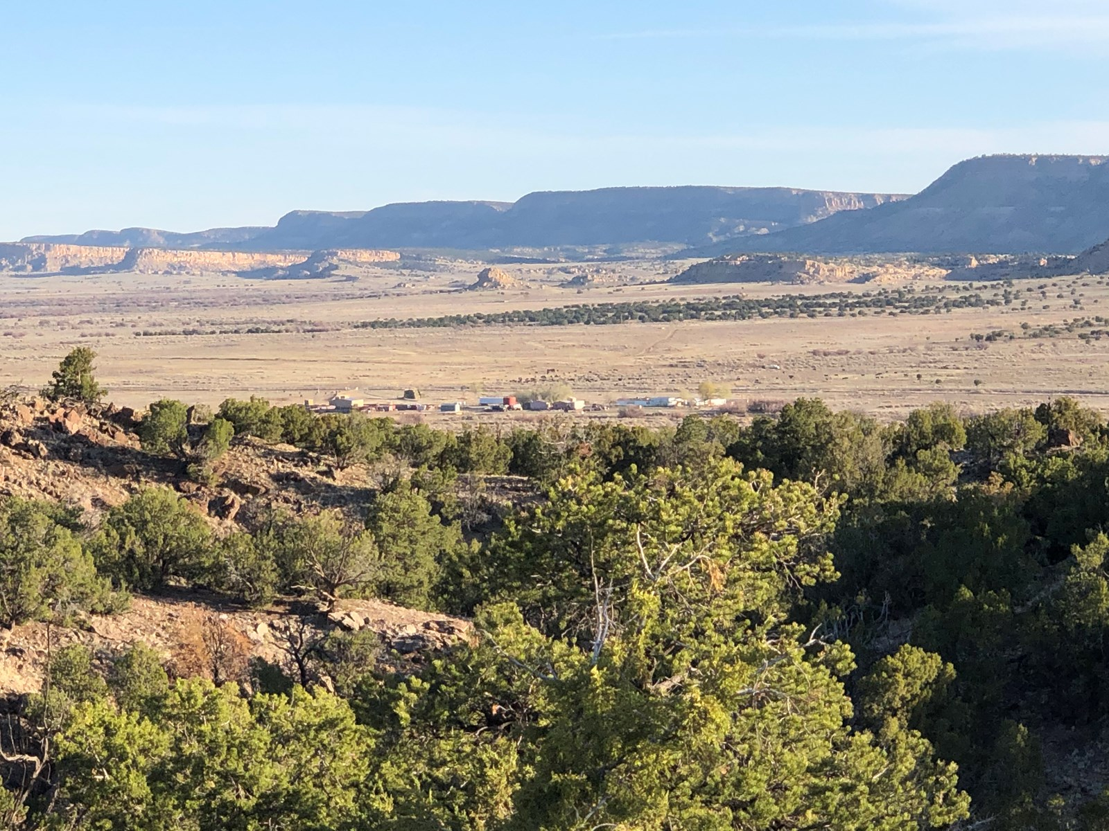 Grants New Mexico Cattle Ranch For Sale
