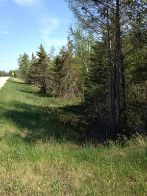 YOUR OWN HUNTING LAND IN THE EASTERN UP OF MICHIGAN