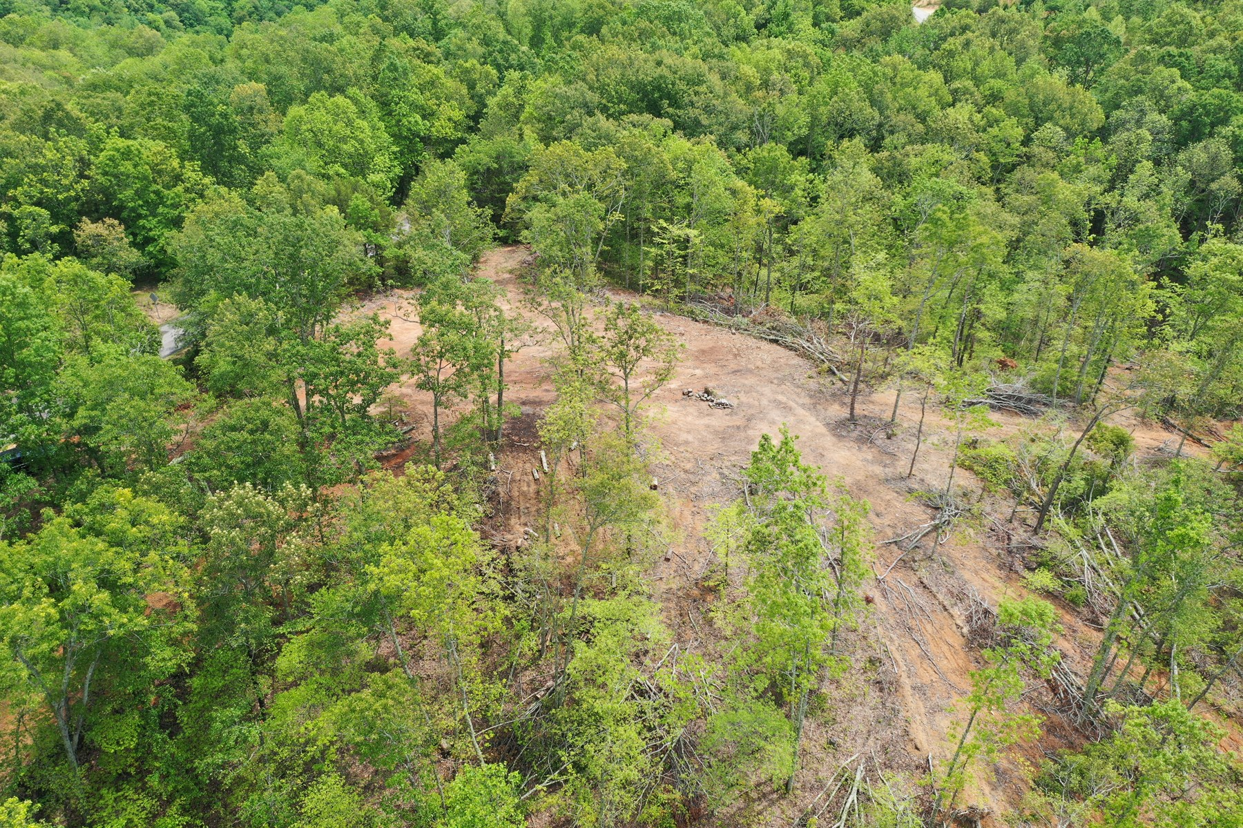 19.56 Acres Vacant Tennessee Land For Sale!