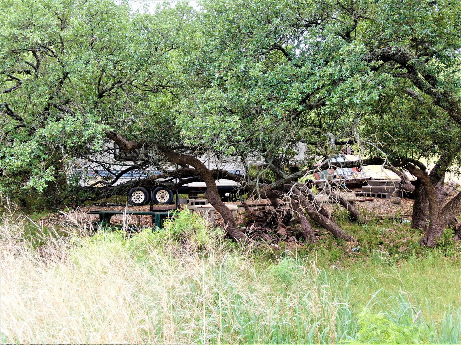 Waterfront Lot For Sale Lake Brownwood Texas Auction