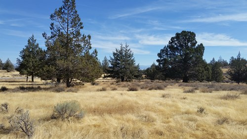 Over 23 Acres of Beautiful Modoc County Vacant Land For Sale
