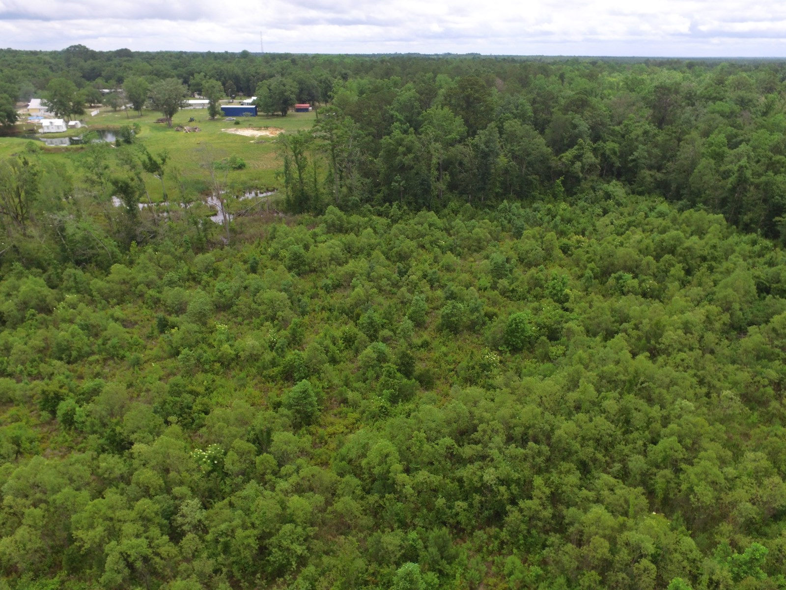 Land for sale in Hosford Florida