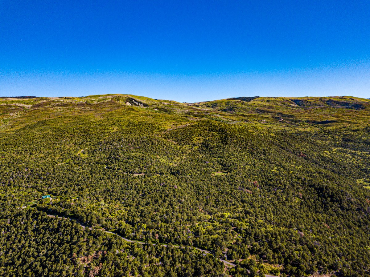 Mountain Land For Sale in Western Colorado