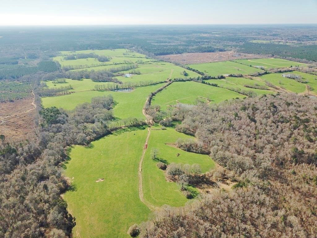 83 Acres Pastureland for Sale Amite County SW MS