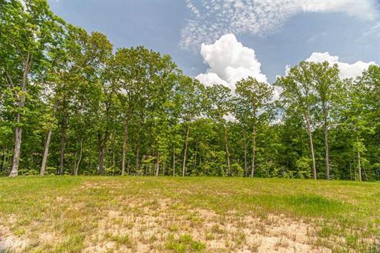 1.65 Acres overlooking Twin Springs Lake